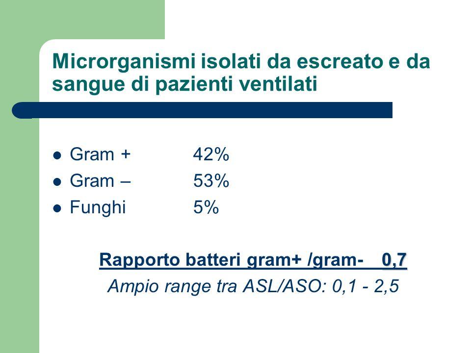 Microrganismi isolati da escreato e da sangue di pazienti ventilati Gram + 42% Gram – 53% Funghi 5% 0,7 Rapporto batteri gram+ /gram- 0,7 Ampio range