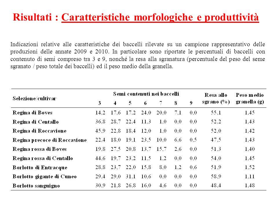 Risultati : Caratteristiche morfologiche e produttività Indicazioni relative alle caratteristiche dei baccelli rilevate su un campione rappresentativo