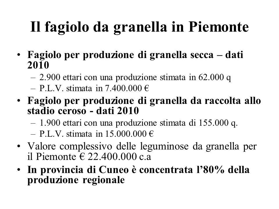 Il fagiolo da granella in Piemonte Fagiolo per produzione di granella secca – dati 2010 –2.900 ettari con una produzione stimata in 62.000 q –P.L.V. s