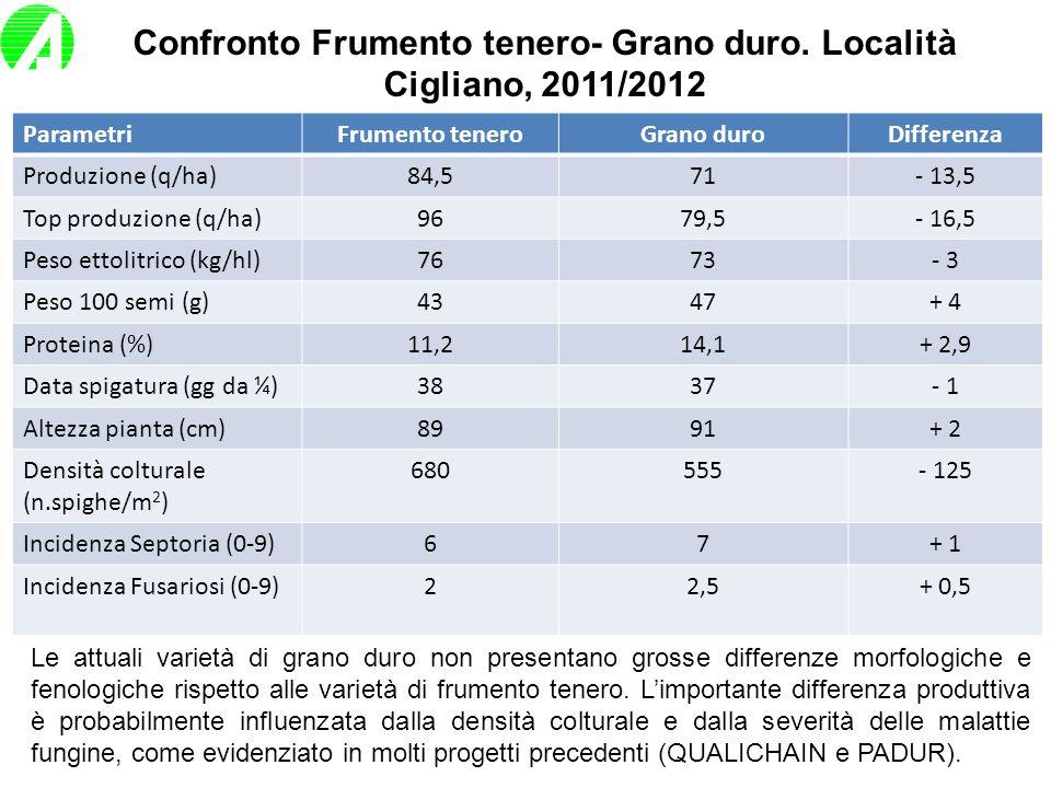 Confronto Frumento tenero- Grano duro. Località Cigliano, 2011/2012 ParametriFrumento teneroGrano duroDifferenza Produzione (q/ha)84,571- 13,5 Top pro