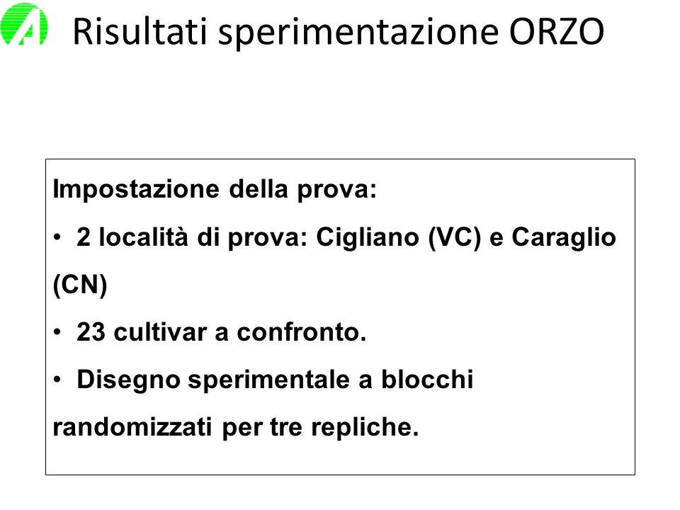 Risultati sperimentazione ORZO Impostazione della prova: 2 località di prova: Cigliano (VC) e Caraglio (CN) 23 cultivar a confronto. Disegno speriment