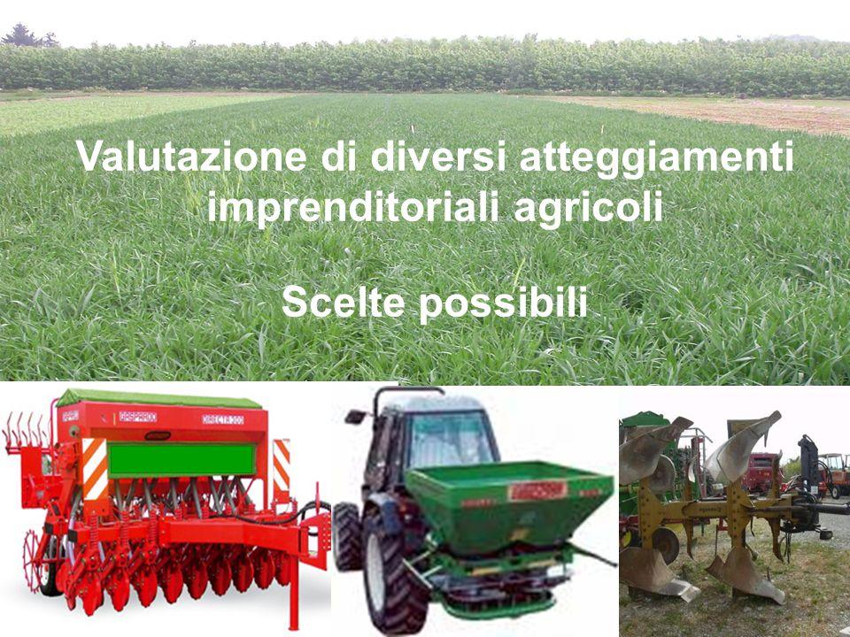 Valutazione di diversi atteggiamenti imprenditoriali agricoli Scelte possibili