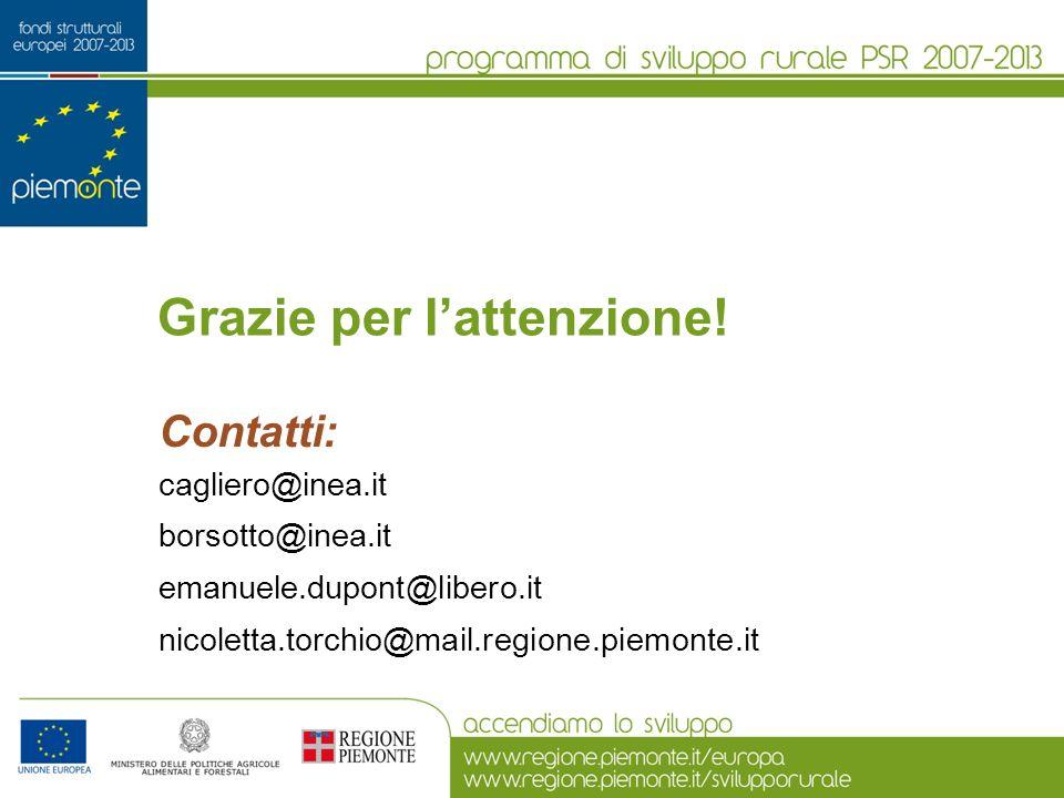 Grazie per lattenzione! Contatti: cagliero@inea.it borsotto@inea.it emanuele.dupont@libero.it nicoletta.torchio@mail.regione.piemonte.it