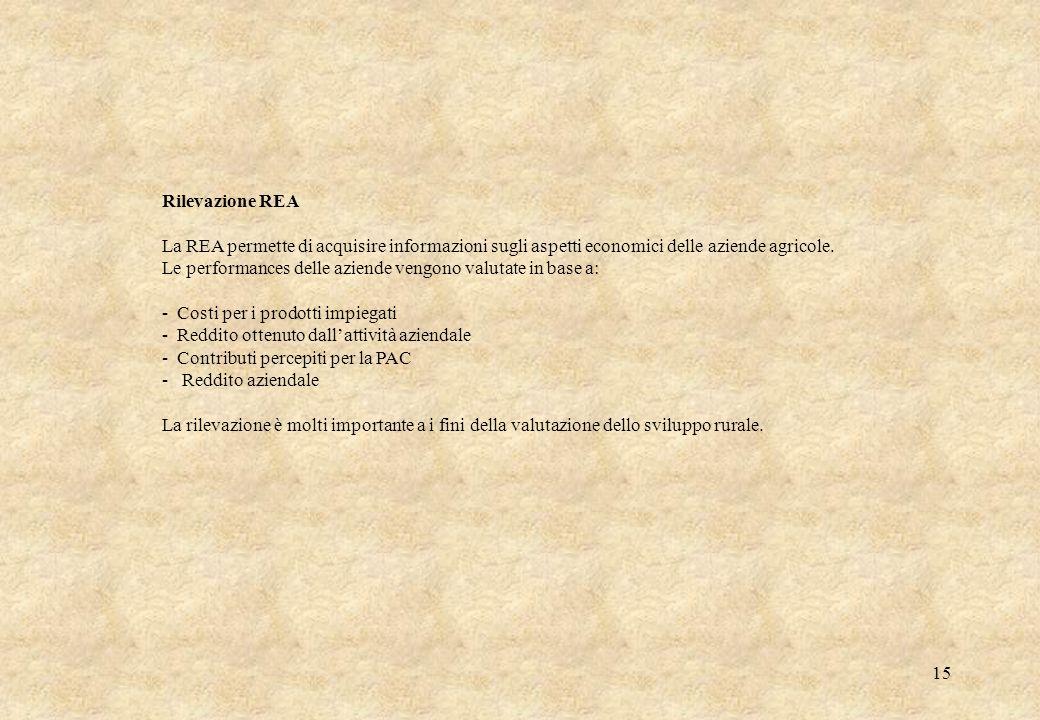 15 Rilevazione REA La REA permette di acquisire informazioni sugli aspetti economici delle aziende agricole. Le performances delle aziende vengono val