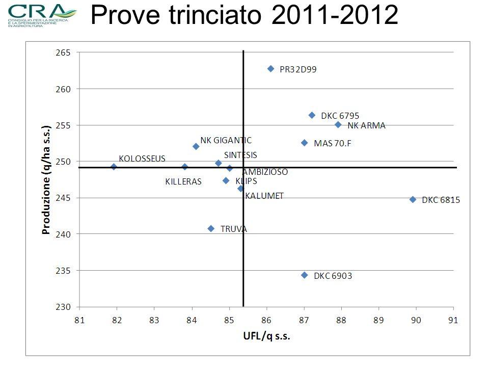 Prove trinciato 2011-2012