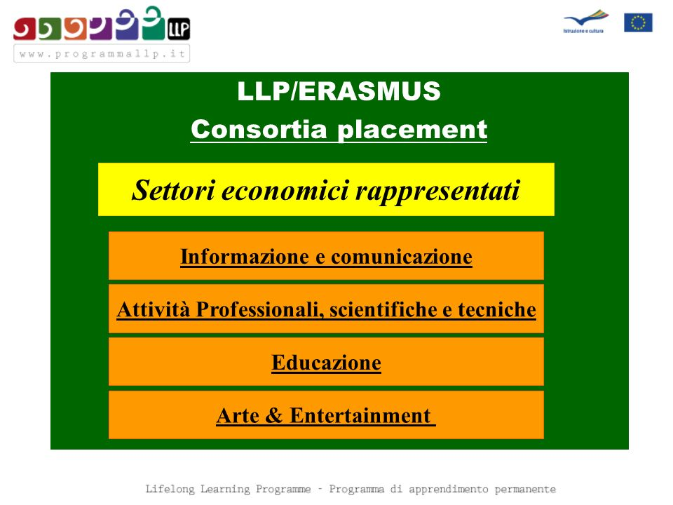 LLP/ERASMUS Consortia placement Settori economici rappresentati Informazione e comunicazione Attività Professionali, scientifiche e tecniche Educazione Arte & Entertainment