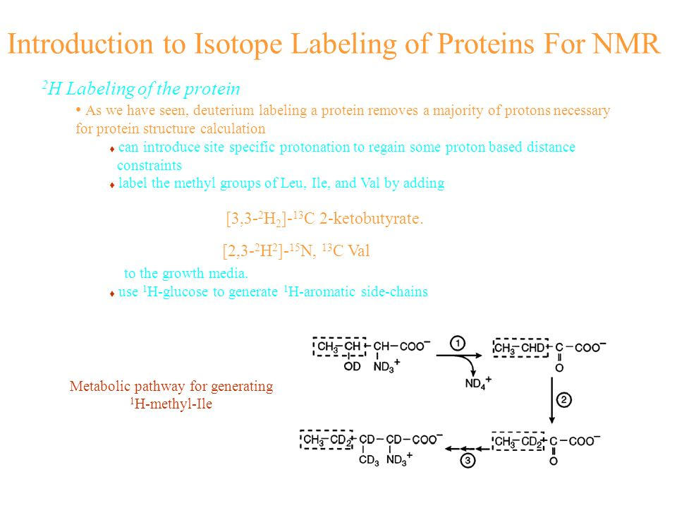 Introduction to Isotope Labeling of Proteins For NMR [3,3- 2 H 2 ]- 13 C 2-ketobutyrate. [2,3- 2 H 2 ]- 15 N, 13 C Val 2 H Labeling of the protein As
