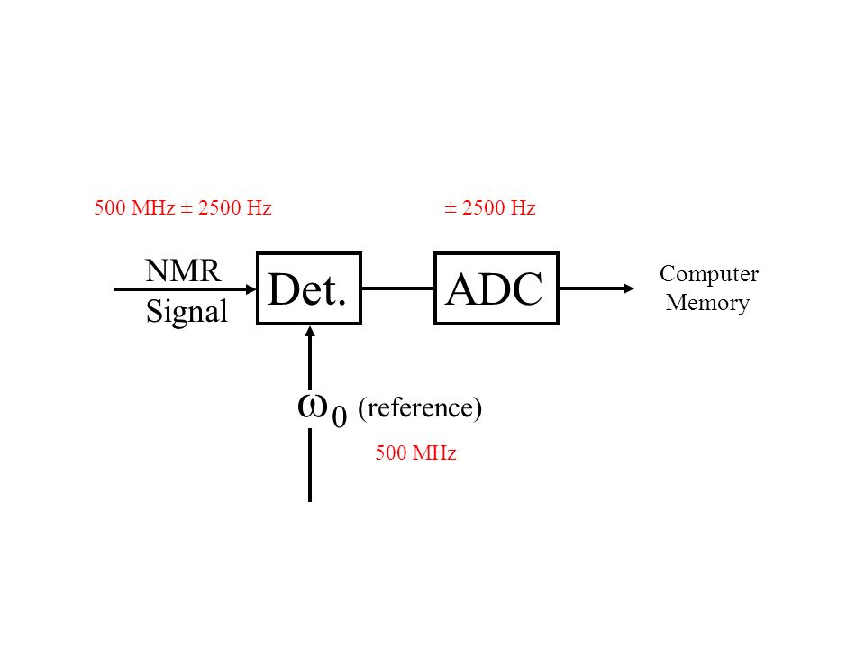 Det.ADC NMR Signal 0 (reference) Computer Memory 500 MHz ± 2500 Hz 500 MHz ± 2500 Hz