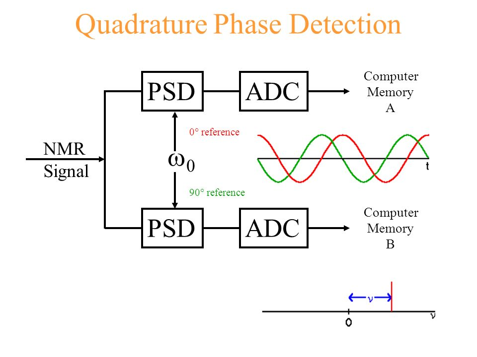 Quadrature Phase Detection PSDADC PSDADC NMR Signal 0 0° reference 90° reference Computer Memory A Computer Memory B