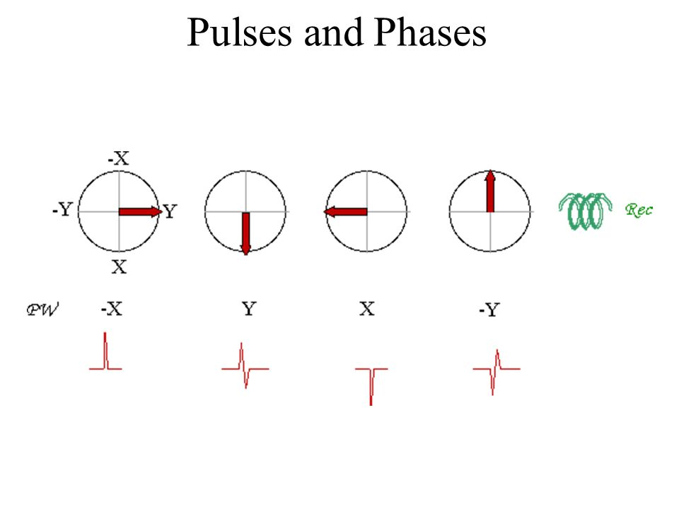 Pulses and Phases
