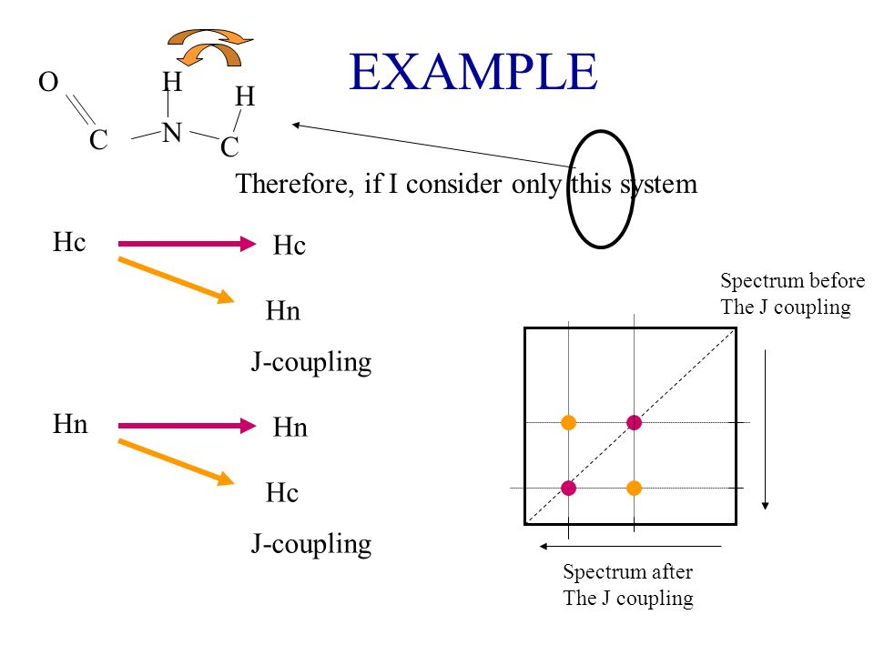 EXAMPLE N H H C C O Spectrum after The J coupling Spectrum before The J coupling Hc Hn J-coupling Therefore, if I consider only this system Hn Hc J-co
