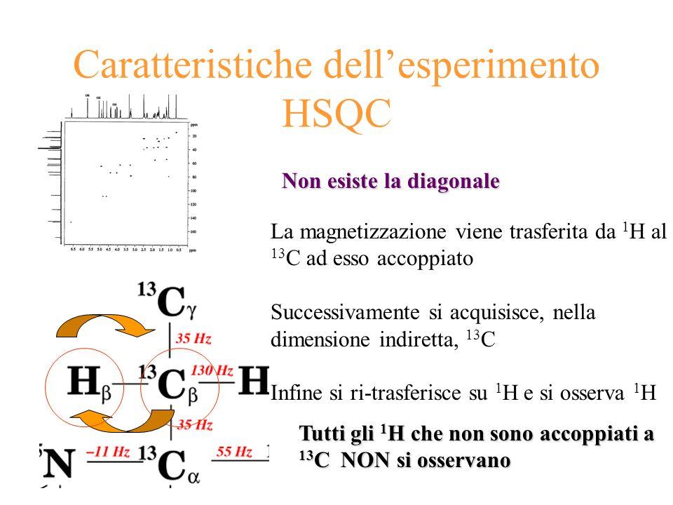 Caratteristiche dellesperimento HSQC Non esiste la diagonale La magnetizzazione viene trasferita da 1 H al 13 C ad esso accoppiato Successivamente si