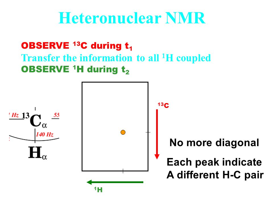 Heteronuclear NMR OBSERVE 13 C during t 1 Transfer the information to all 1 H coupled OBSERVE 1 H during t 2 1H1H 13 C No more diagonal Each peak indi