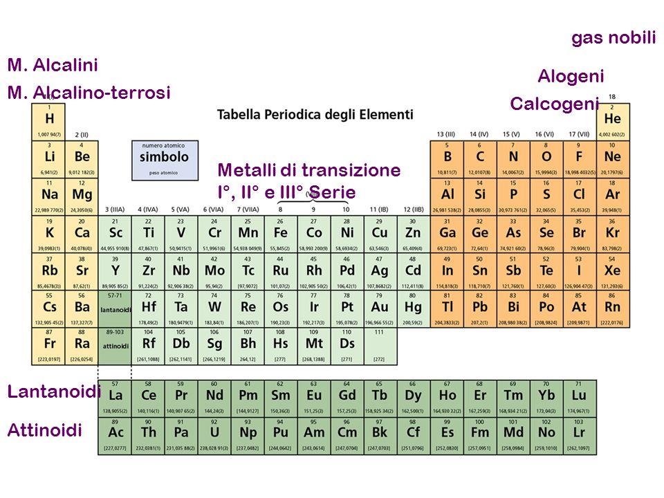 M. Alcalini M. Alcalino-terrosi Alogeni Calcogeni gas nobili Metalli di transizione I°, II° e III° Serie Lantanoidi Attinoidi