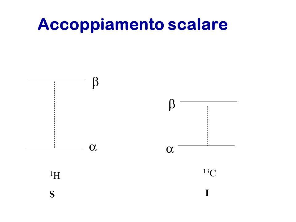 Accoppiamento scalare 1H1H 13 C S I