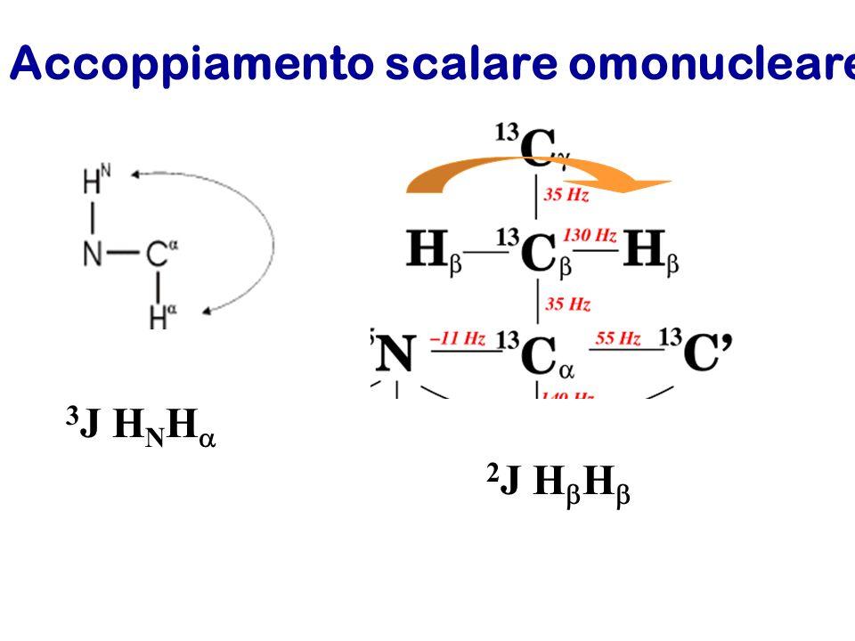 Accoppiamento scalare omonucleare 3 J H N H 2 J H H