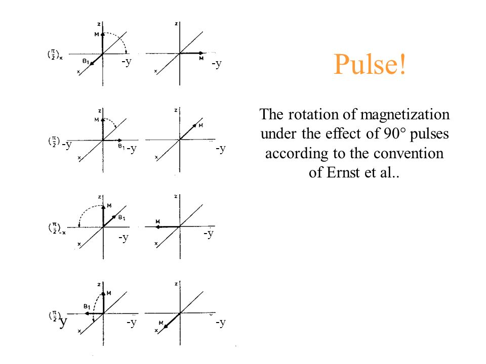 Pulse! -y y The rotation of magnetization under the effect of 90° pulses according to the convention of Ernst et al..