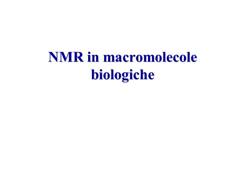 NMR in macromolecole biologiche