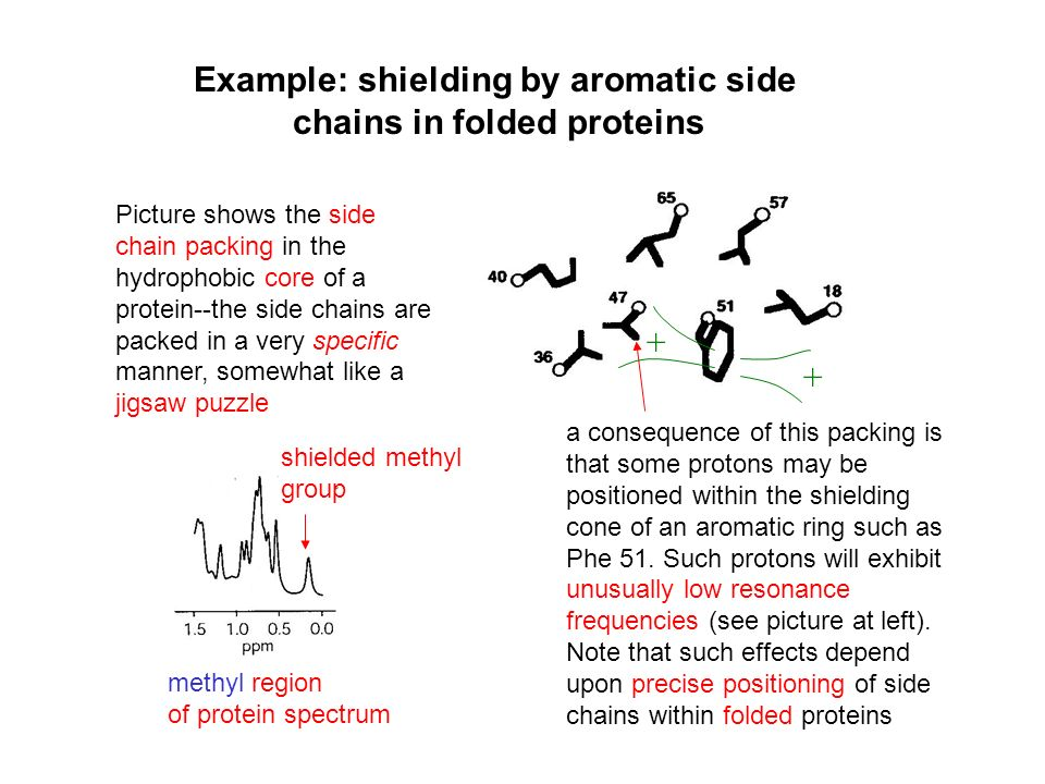 Example: shielding by aromatic side chains in folded proteins Picture shows the side chain packing in the hydrophobic core of a protein--the side chai
