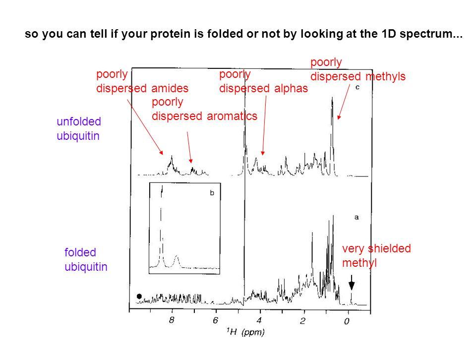 poorly dispersed amides poorly dispersed aromatics poorly dispersed alphas poorly dispersed methyls very shielded methyl unfolded ubiquitin folded ubi