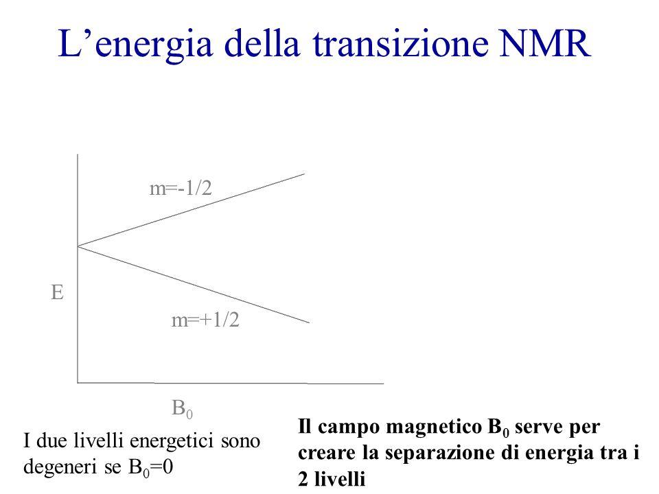 Lenergia della transizione NMR B0B0 E m=+1/2 m=-1/2 I due livelli energetici sono degeneri se B 0 =0 Il campo magnetico B 0 serve per creare la separa