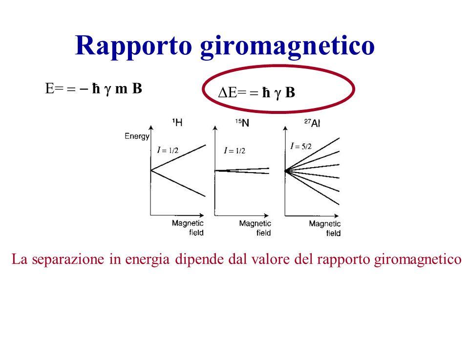 Rapporto giromagnetico E= ħ m B E= ħ B La separazione in energia dipende dal valore del rapporto giromagnetico