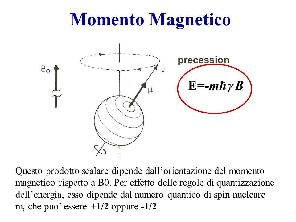 Momento Magnetico Questo prodotto scalare dipende dallorientazione del momento magnetico rispetto a B0. Per effetto delle regole di quantizzazione del