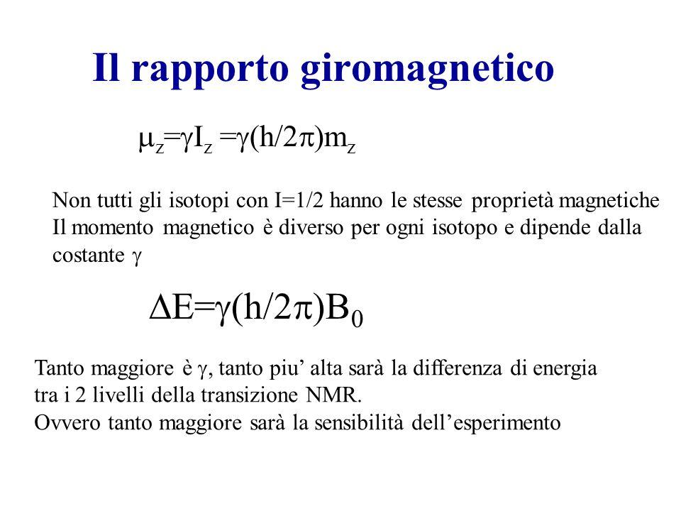 Il rapporto giromagnetico E= (h/2 )B 0 z = I z = (h/2 )m z Non tutti gli isotopi con I=1/2 hanno le stesse proprietà magnetiche Il momento magnetico è
