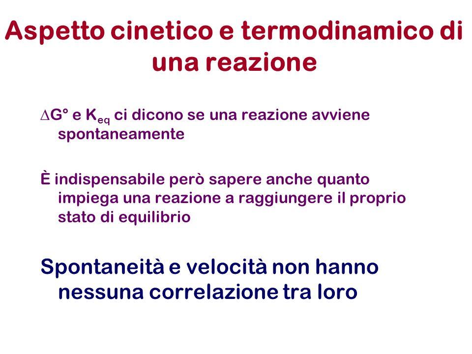 Aspetto cinetico e termodinamico di una reazione G° e K eq ci dicono se una reazione avviene spontaneamente È indispensabile però sapere anche quanto