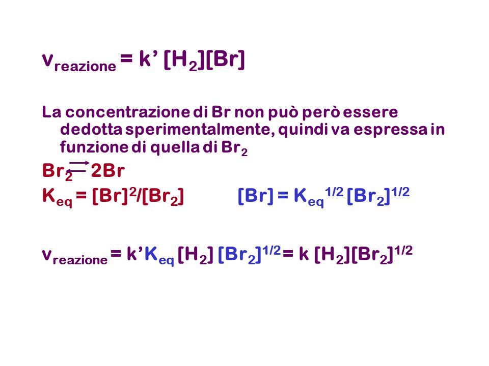 v reazione = k [H 2 ][Br] La concentrazione di Br non può però essere dedotta sperimentalmente, quindi va espressa in funzione di quella di Br 2 Br 2