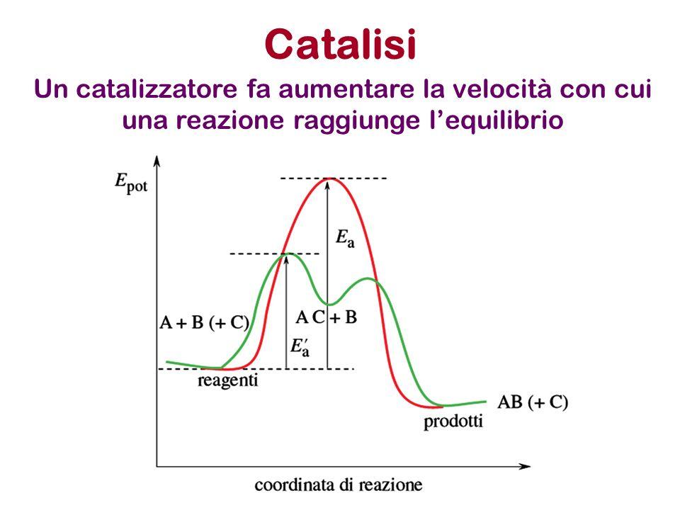 Catalisi Un catalizzatore fa aumentare la velocità con cui una reazione raggiunge lequilibrio