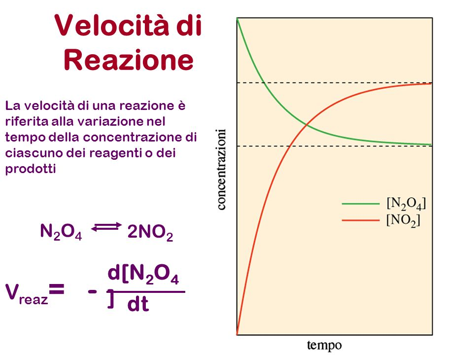 Catalisi enzimatica CO 2 + H 2 OHCO 3 - + H + Anidrasi carbonica Zinco-Enzima