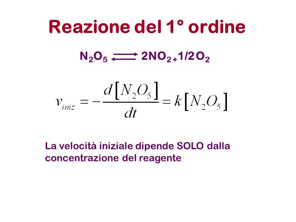 Reazione del 1° ordine N2O5N2O5 2NO 2 + 1/2 O 2 La velocità iniziale dipende SOLO dalla concentrazione del reagente