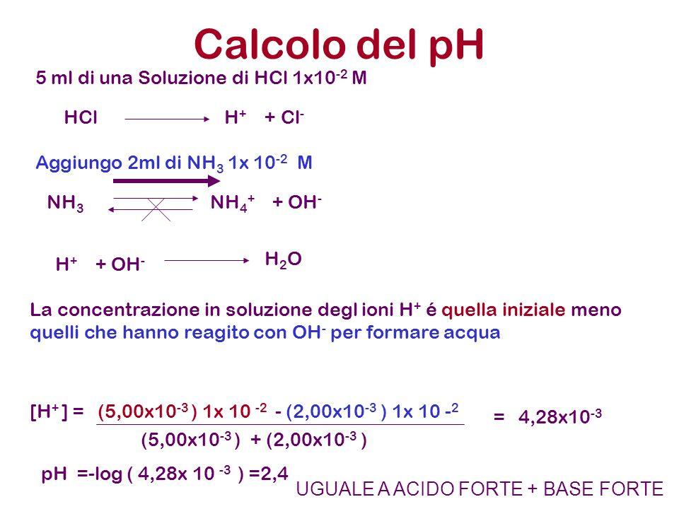 Calcolo del pH 5 ml di una Soluzione di HCl 1x10 -2 M Aggiungo 2ml di NH 3 1x 10 -2 M HCl H + + Cl - NH 3 NH 4 + + OH - H + + OH - H 2 O La concentraz