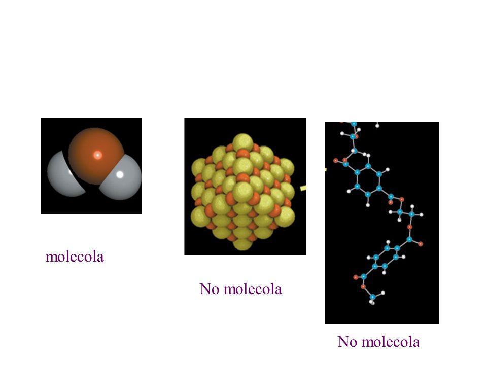 molecola No molecola