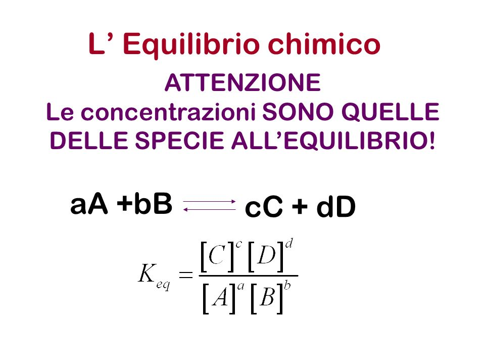 L Equilibrio chimico 2NO 2 N2O4N2O4 N2N2 2NH 3 +3H 2