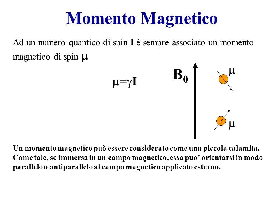Lenergia della transizione NMR B0B0 E m=+1/2 m=-1/2 E=h 0 Larmor Frequency I due livelli energetici sono degeneri se B 0 =0 E= (h/2 )B 0 E= -B 0 Il campo magnetico B 0 serve per creare la separazione di energia tra i 2 livelli
