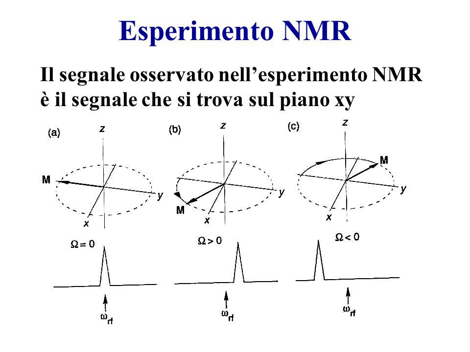 Esperimento NMR Il segnale osservato nellesperimento NMR è il segnale che si trova sul piano xy