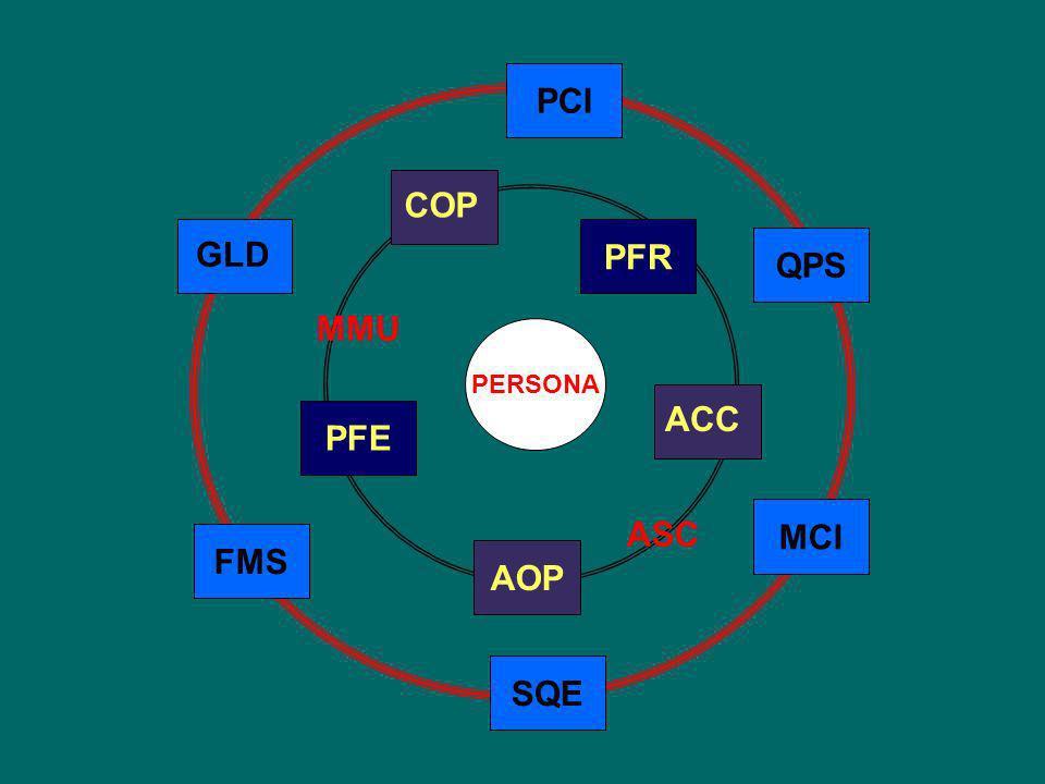 JOINT COMMISION INTERNATIONAL 1.ACC: Accesso allassistenza e continuità delle cure 2.PFR: Diritti dei pazienti e dei familiari 3.AOP: Valutazione del paziente 4.COP: Cura del paziente 5.PFE: Educazione del paziente e dei familiari 6.ASC: Assistenza anestesiologica e chirurgica 7.MMU: Gestione e utilizzo dei farmaci Gli standard JCI sono raggruppati in 13 capitoli dei quali 7 orientati al paziente