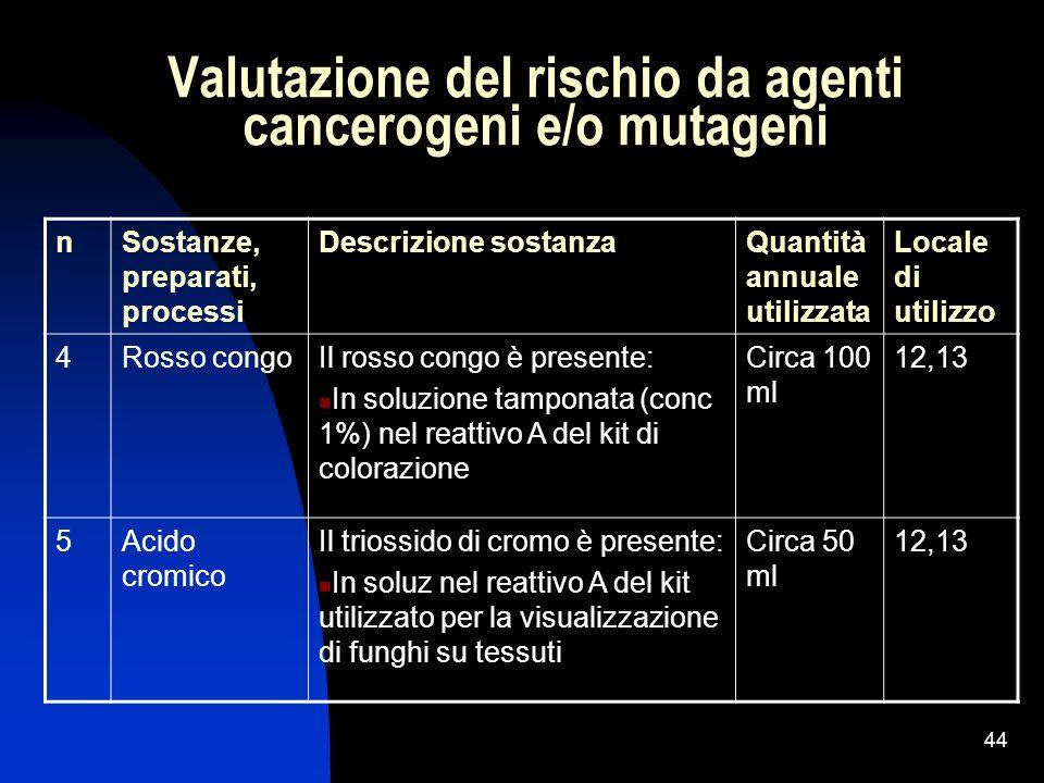 44 Valutazione del rischio da agenti cancerogeni e/o mutageni nSostanze, preparati, processi Descrizione sostanzaQuantità annuale utilizzata Locale di