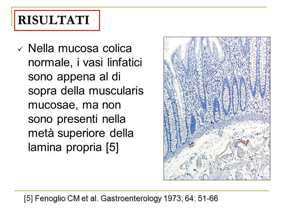 RISULTATI Nella mucosa colica normale, i vasi linfatici sono appena al di sopra della muscularis mucosae, ma non sono presenti nella metà superiore de