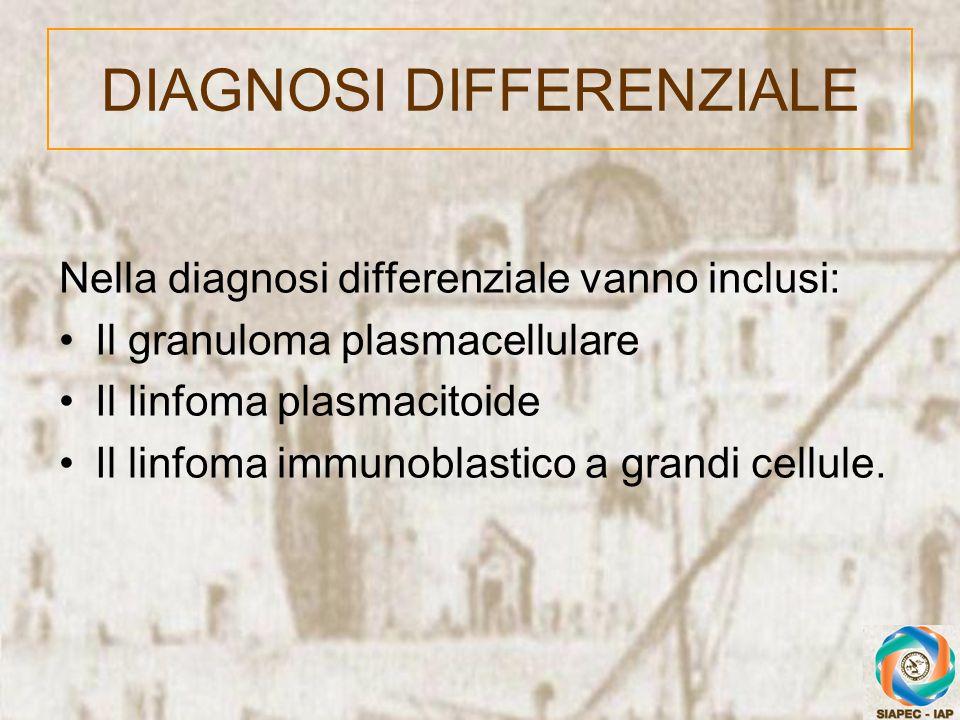 Nella diagnosi differenziale vanno inclusi: Il granuloma plasmacellulare Il linfoma plasmacitoide Il linfoma immunoblastico a grandi cellule. DIAGNOSI