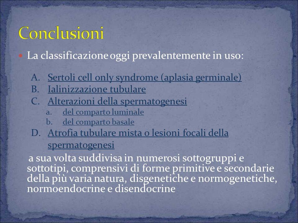 La classificazione oggi prevalentemente in uso: a sua volta suddivisa in numerosi sottogruppi e sottotipi, comprensivi di forme primitive e secondarie della più varia natura, disgenetiche e normogenetiche, normoendocrine e disendocrine A.Sertoli cell only syndrome (aplasia germinale) B.Ialinizzazione tubulare C.Alterazioni della spermatogenesi a.del comparto luminale b.del comparto basale D.Atrofia tubulare mista o lesioni focali della spermatogenesi