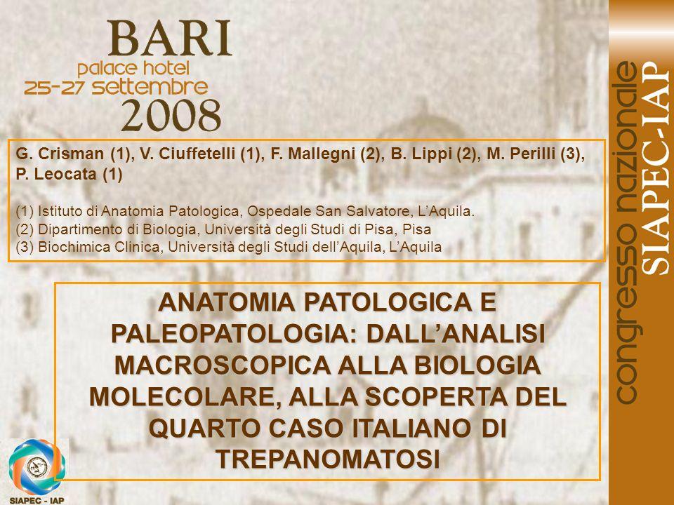 G. Crisman (1), V. Ciuffetelli (1), F. Mallegni (2), B. Lippi (2), M. Perilli (3), P. Leocata (1) (1) Istituto di Anatomia Patologica, Ospedale San Sa