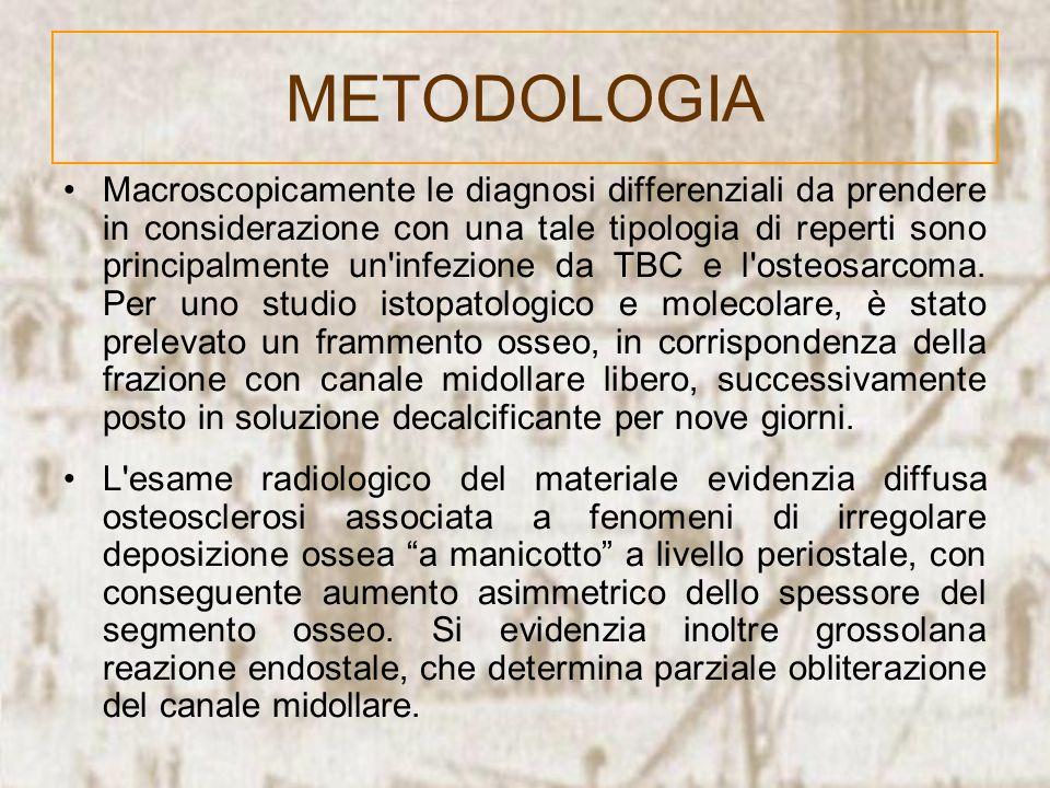 Macroscopicamente le diagnosi differenziali da prendere in considerazione con una tale tipologia di reperti sono principalmente un'infezione da TBC e