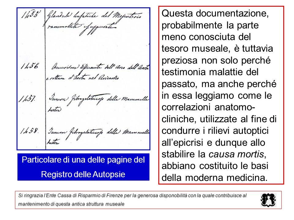 Questa documentazione, probabilmente la parte meno conosciuta del tesoro museale, è tuttavia preziosa non solo perché testimonia malattie del passato,