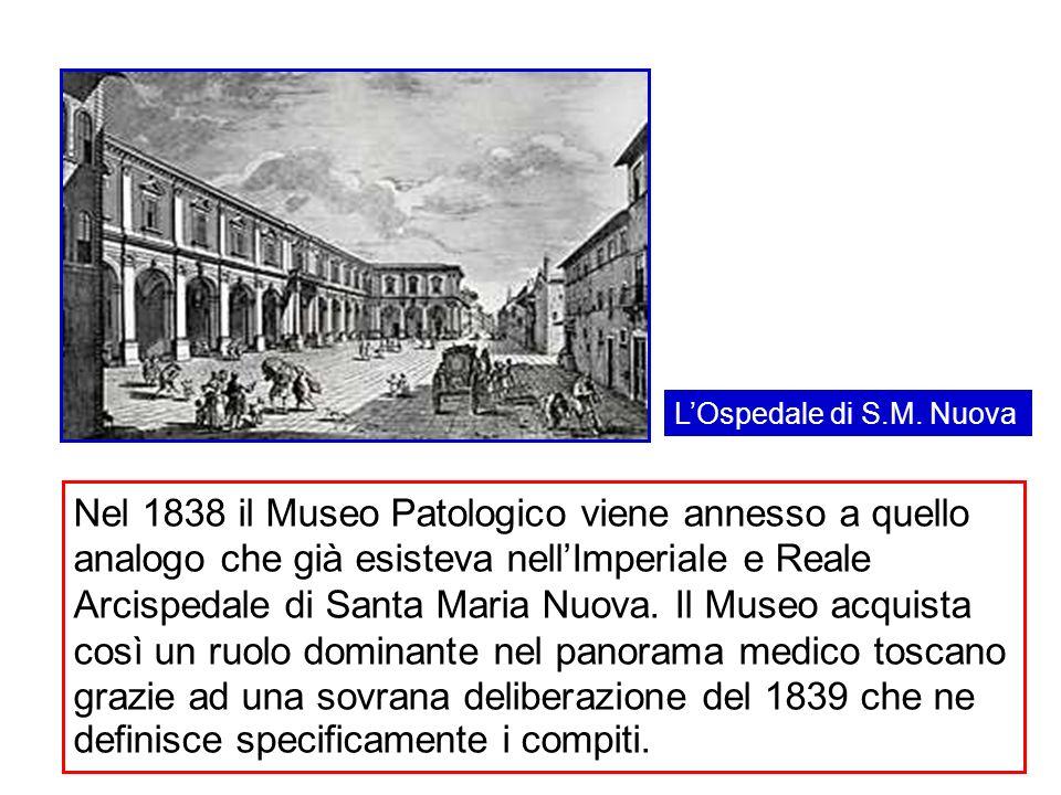 Nel 1838 il Museo Patologico viene annesso a quello analogo che già esisteva nellImperiale e Reale Arcispedale di Santa Maria Nuova. Il Museo acquista