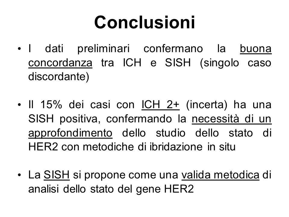 Conclusioni I dati preliminari confermano la buona concordanza tra ICH e SISH (singolo caso discordante) Il 15% dei casi con ICH 2+ (incerta) ha una S