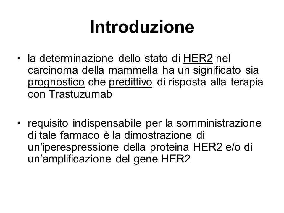lo stato di HER2 può essere attualmente indagato studiando: a) la presenza di iperespressione della proteina HER2 con: ICH ( immunoistochimica ) b) la presenza di unamplificazione del gene HER2 con: FISH ( Ibridazione In Situ Fluorescente ) CISH ( Ibridazione In Situ Cromogenica ) SISH ( Ibridazione In Situ Argentica )