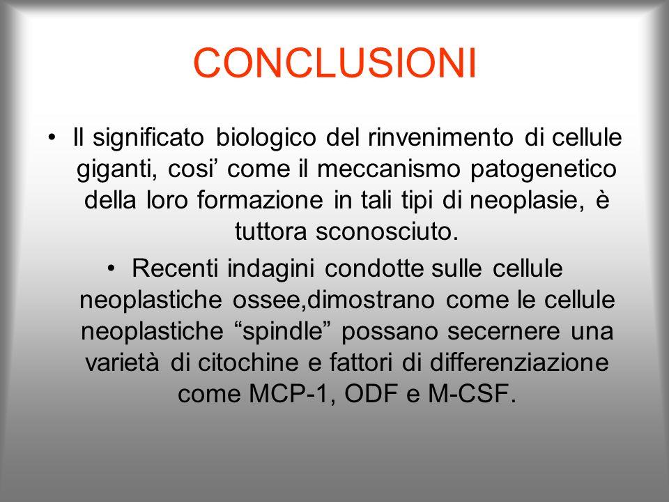CONCLUSIONI Il significato biologico del rinvenimento di cellule giganti, cosi come il meccanismo patogenetico della loro formazione in tali tipi di n